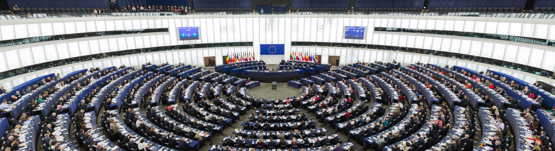 International Conference, Members of the European Parliament call for urgency on resolving remaining restitution issues