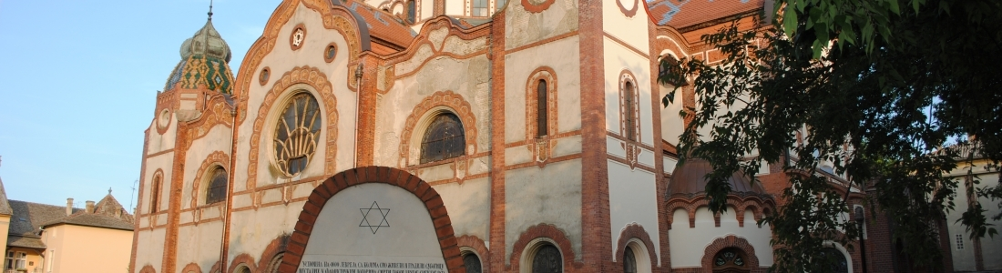Serbian Holocaust Survivors in 27 Countries Around the World to Receive New Aid